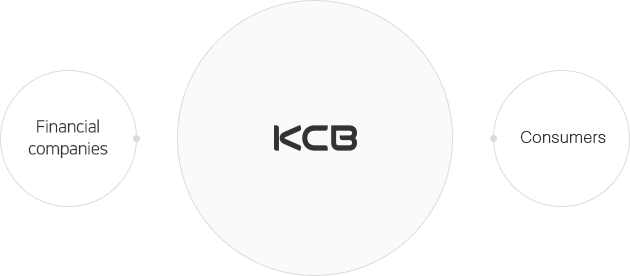 KCB - Financial companies, Consumers